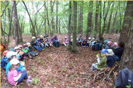 Waldtage: Wir entdecken den faszinierenden Wald.